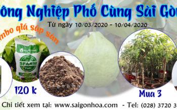 Nong Nghiep Pho