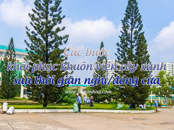 Cac Buoc Khoi Phuc Canh Quan