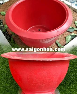 Chau Nhua Tron Hinh Rong