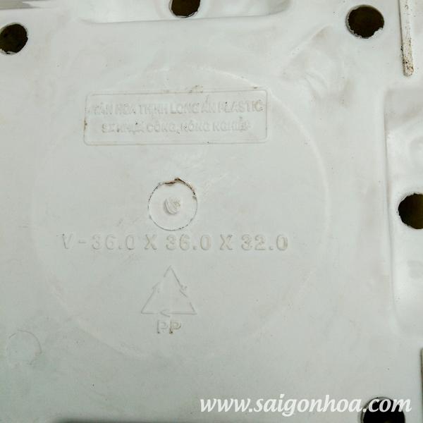 Chau Vuong Nhua 36X36 1