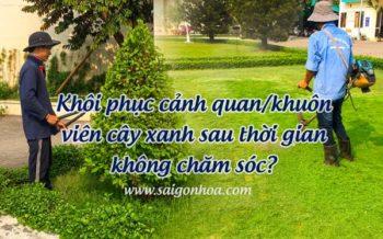 Duy Tri Bao Duong Canh Quan
