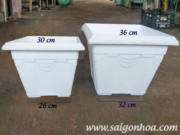 Kich Co Chau Nhua Vuong