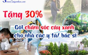 Tang Goi Cham Soc Cay Xanh