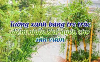 Tuong Xanh Bang Tre Truc San Vuon