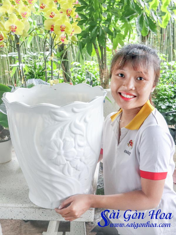 Ban Chau Nhua Mieng Hoa