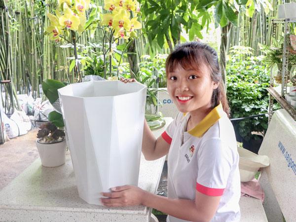 Ban Chau Nhua Ong Bat Giac