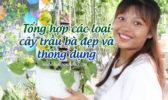 Tong Hop Cac Loai Trau Ba
