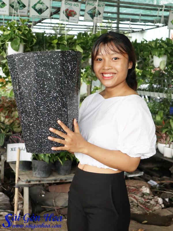 Chau Nhưa Van Da Bat Giac