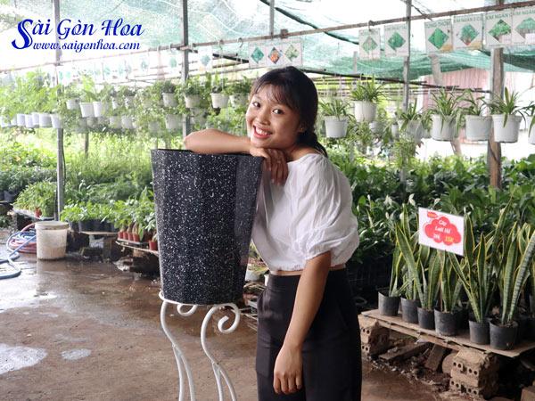 Chau Nhua Bat Giac Den
