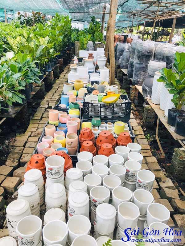 Nơi Cung Cấp Chậu Nhựa Tự Dưỡng