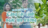 Qua Tang Cay Canh Tuu Truong