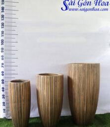 Bo Chau Da Mai Tru Dong
