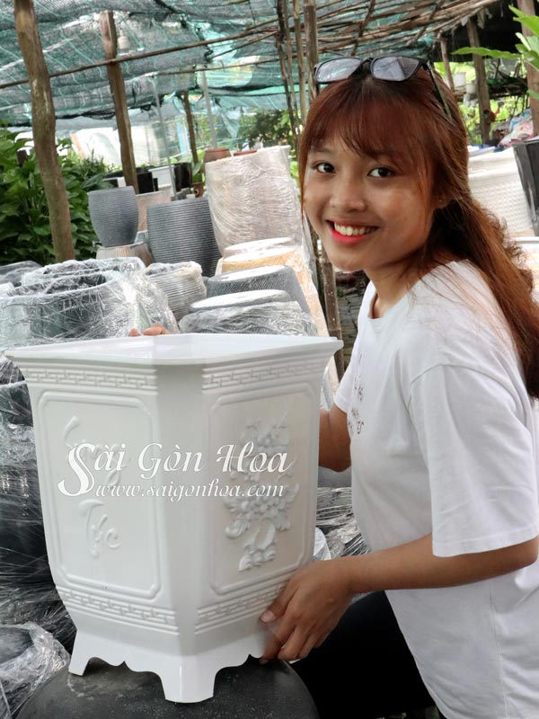 Chau Nhua Trang Vuong Tu Quy
