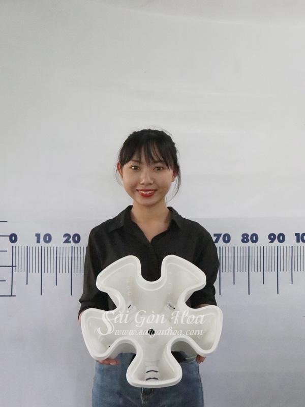 Chau Nhua Trong Thuy Canh