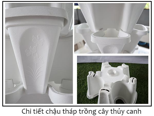 Chi Tiet Chau Nhua Thap Thuy Canh