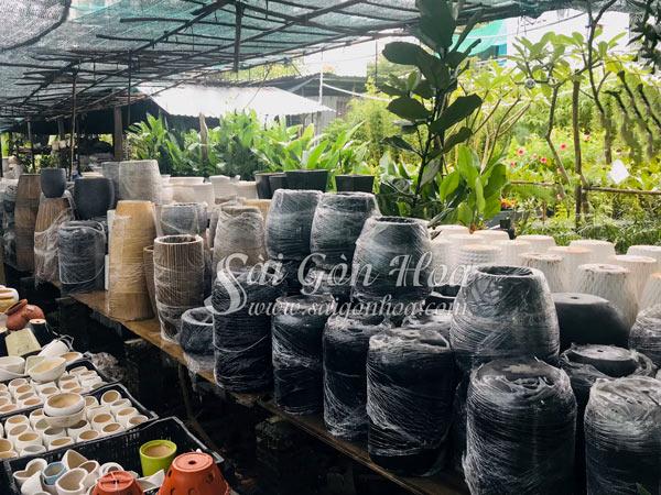 Chậu Đá Mài Gáo Dừa Nhỏ Xám