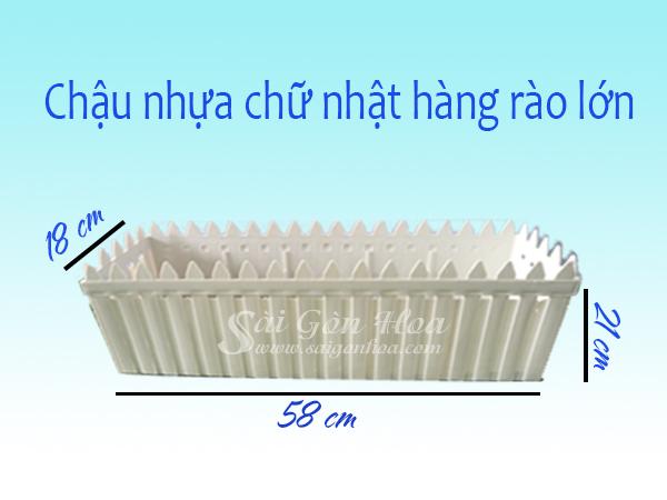 Kich Thuoc Chau Nhua Hang Rao Lon