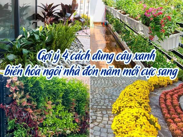4 Cach Dung Cay Bien Hoa Ngoi Nha Cho Nam Moi