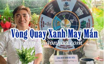 Khuyen Mai Vong Quay Xanh May Man