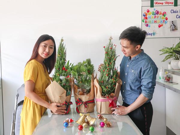 Noi Ban Cay Qua Tang Noel