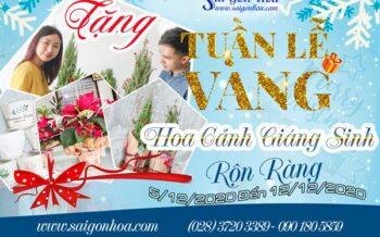 Tuan Le Vang Hoa Canh Giang Sinh Ron Rang