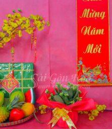 Hoa Song Doi Giay Van Long