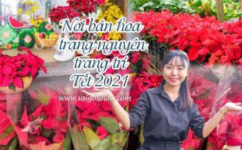 Noi Ban Hoa Trang Nguyen Tet 2021