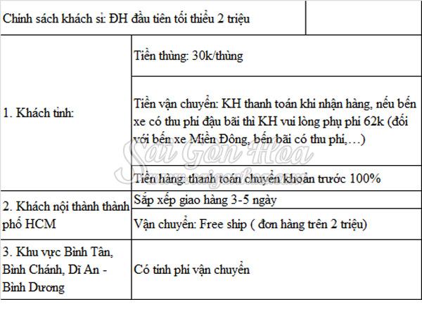 Chinh Sach Khach Si Sai Gon Hoa