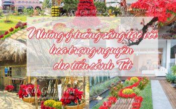 Y Tuong Sang Tao Tieu Canh Trang Nguyen