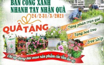 Ban Cong Xanh Nhanh Tay Nhan Qua