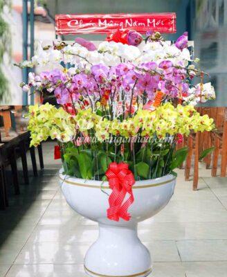Chau-Lan-Ho-Diep-Tai-Phat