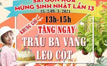 Mung Sinh Nhat Lan Thu 13