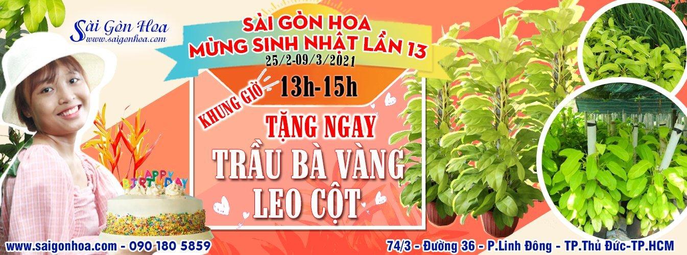 Mung Sinh Nhat Lan Thu 13 Sgh