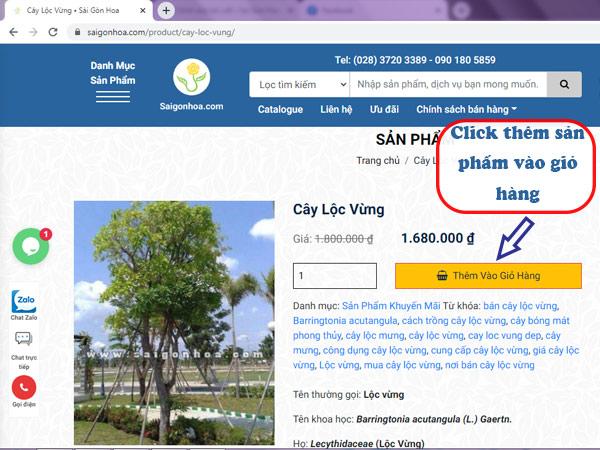 Them San Pham Vao Gio Hang