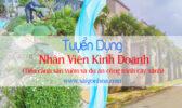 Tuyen Dung Nhan Vien Kinh Doanh Tieu Canh