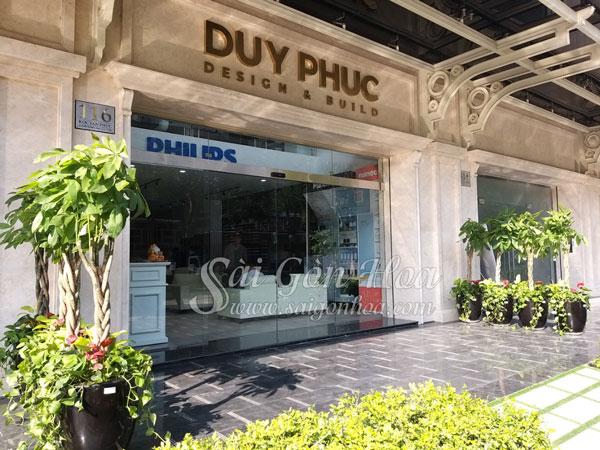 Cong Dung Cay Kim Ngan Tai Phat