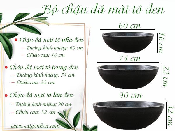 Kich Thuoc Bo Chau Da Mai To Den