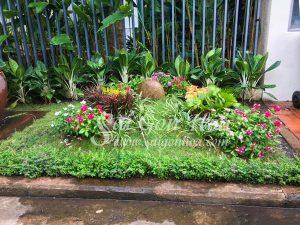 Trang Tri Tieu Canh San Vuon Bang Kieng La