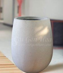 Chau Giot Nuoc Trang