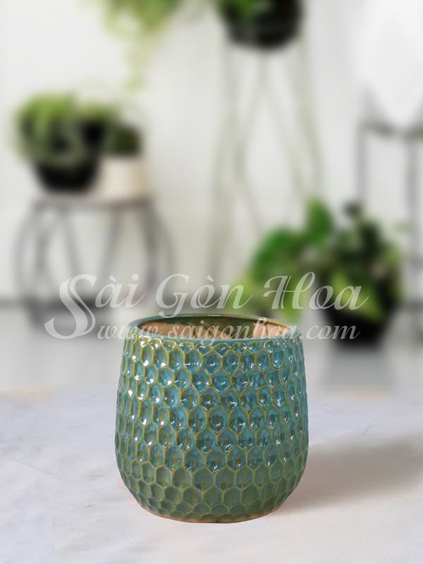 Chau Su To Ong Xanh L3