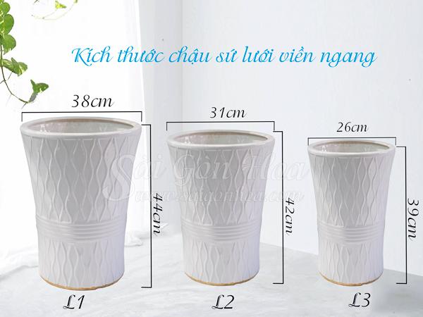 Kich Thuoc Chau Luoi Vien Ngang