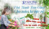 Phu Ban Cong Mua He