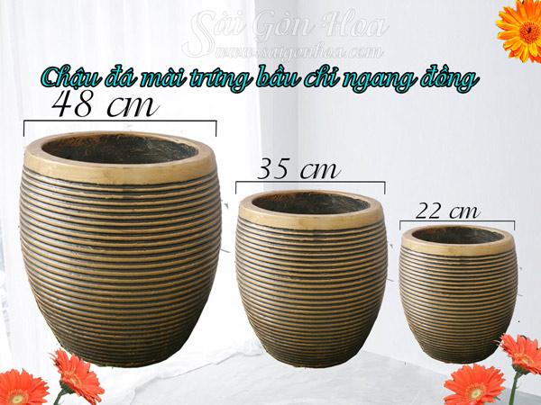 Chậu Đá Mài Trứng Bầu Chỉ Ngang Đồng