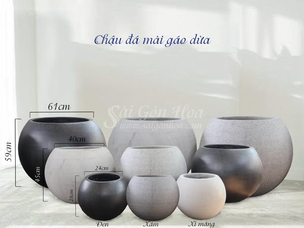 Chậu Đá Mài Gáo Dừa Xi Măng