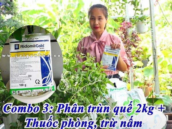 Combo 3 Phuc Hoi Ban Cong Cuc Tan