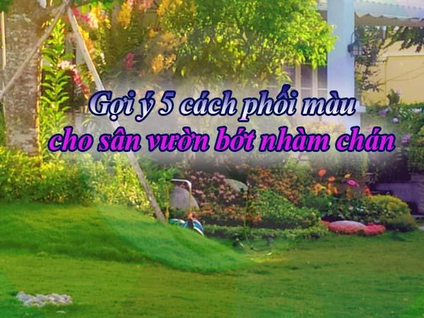 Phoi Mau Cho San Vuon