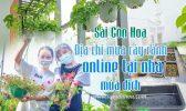 Sai Gon Hoa Ban Cay Canh Mua Dich