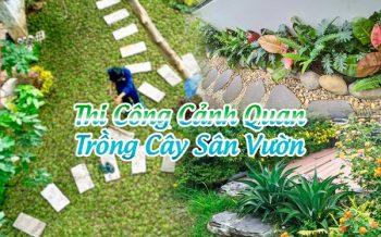Thi Cong Canh Quan
