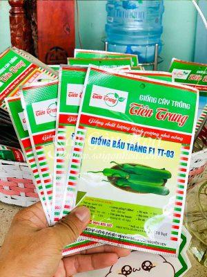 Hat Giong Bau Trang