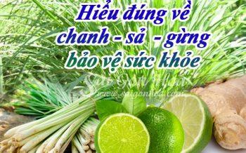 Hieu Dung Ve Chanh Sa Gung